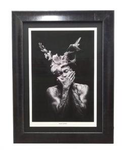 veneer-frame